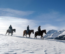 Livigno Horse riding